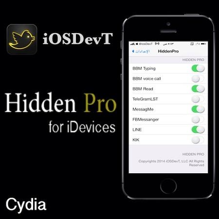 Hidden Pro
